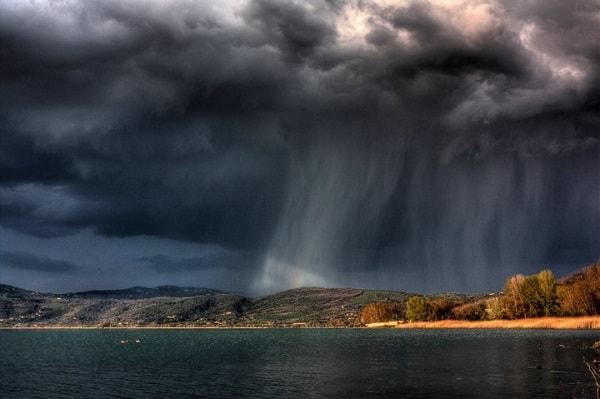 Hujan membawa mikroba kembali ke Bumi bersama air.